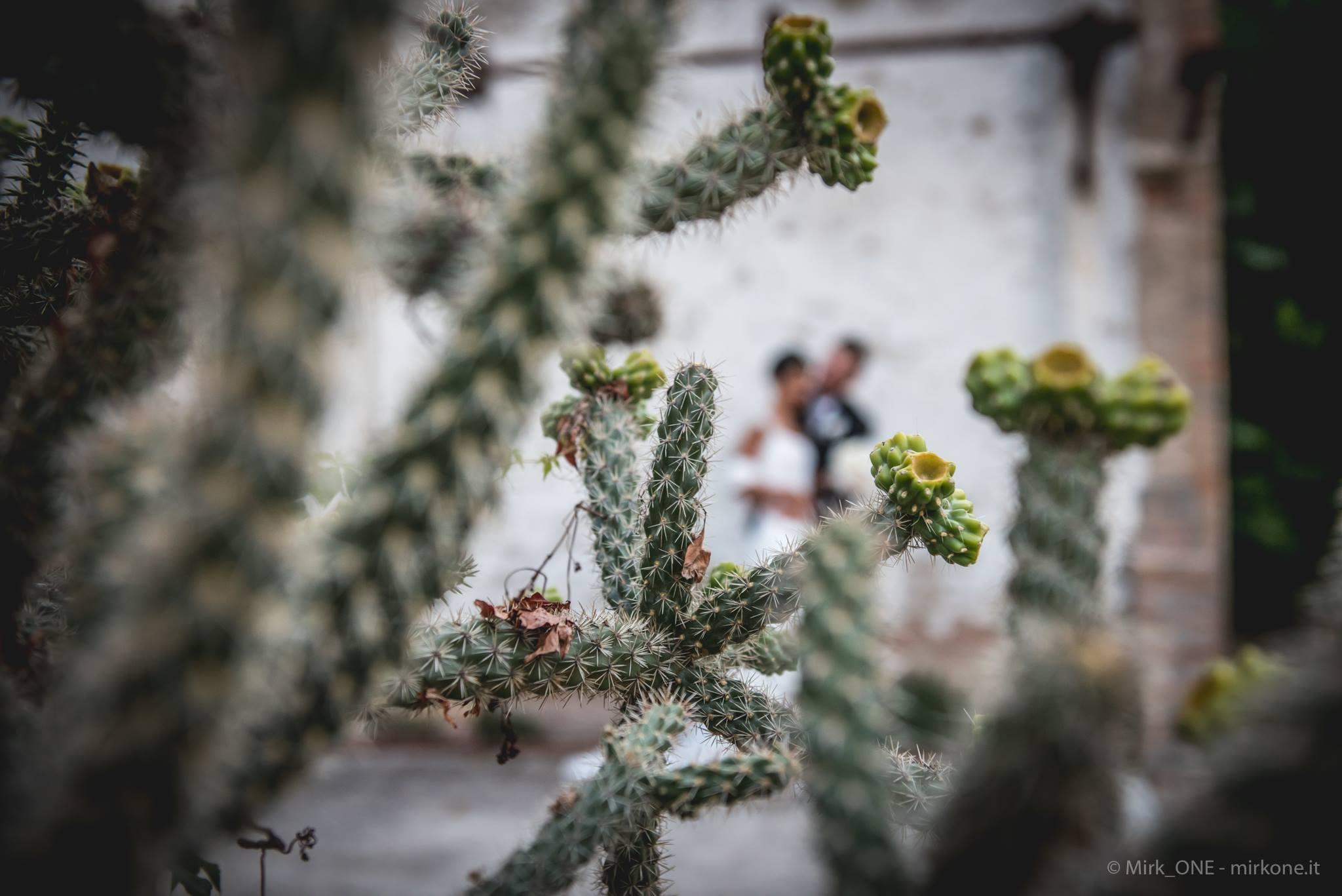 https://lnx.mirkone.it/wp-content/uploads/2015/07/mirk_ONE-fotografo-matrimonio-00116.jpg